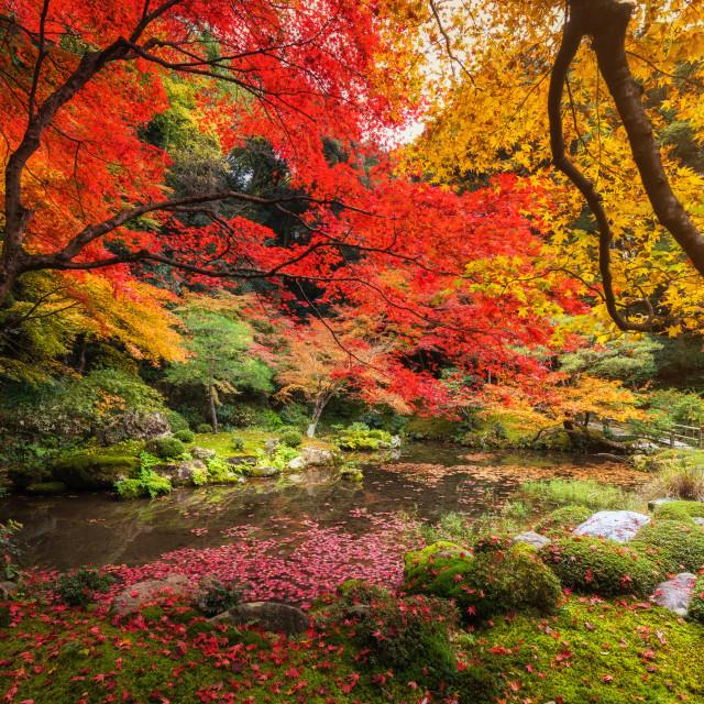 """Autumn park at Nanzen-ji Temple, Kyoto"" stock image"