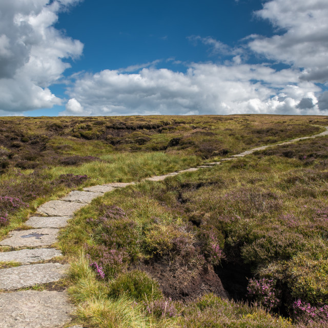 """On Pendle Hill"" stock image"