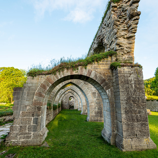 """""""Abbey ruins"""" stock image"""