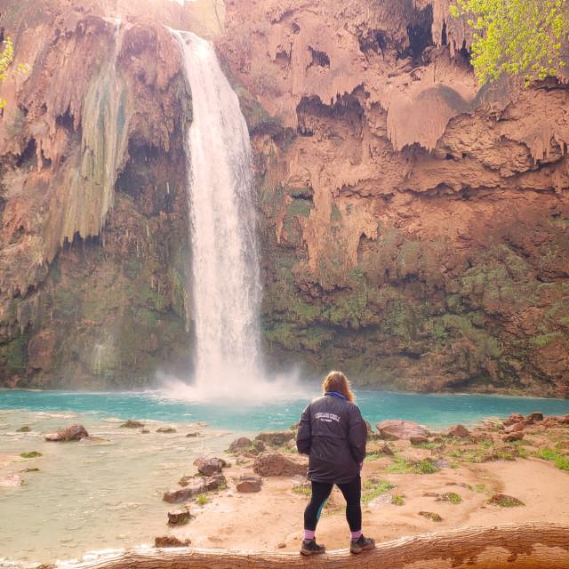 """Havasu Falls"" stock image"