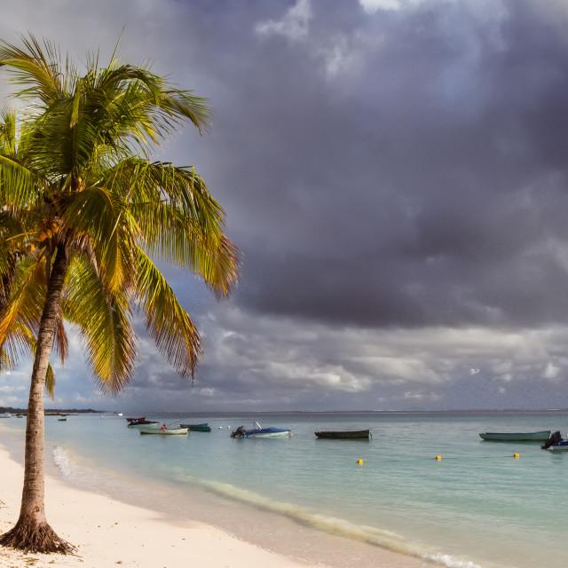 """Stormy sky over a tropical beach"" stock image"