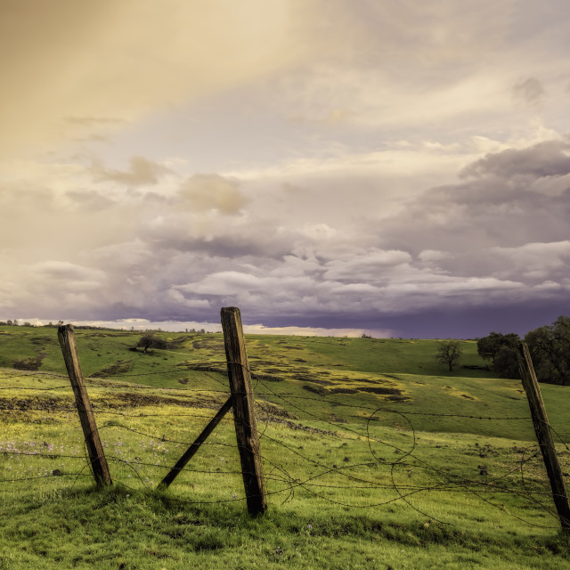"""Picturesque landscape of an old fence in a field at sunset."" stock image"