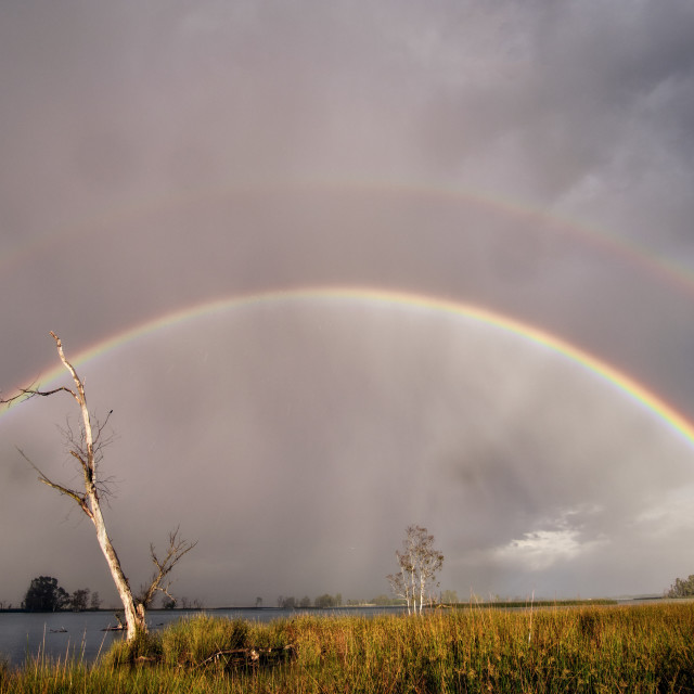 """Amazing landscape of a double rainbow over a small lake and wetlands"" stock image"