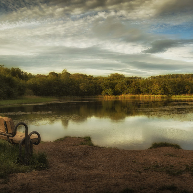 """""""The lower lake at Penllergare woods"""" stock image"""