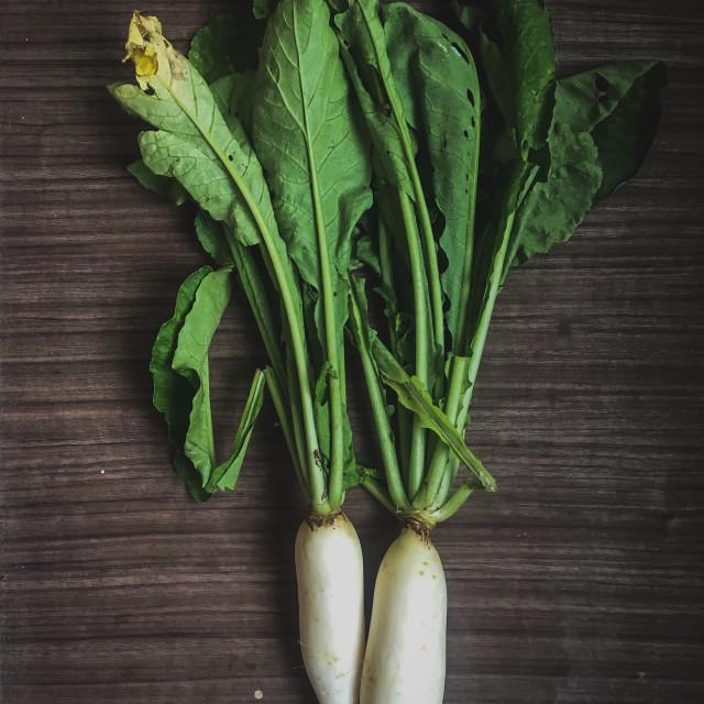 """""""Fresh organic Radish"""" stock image"""
