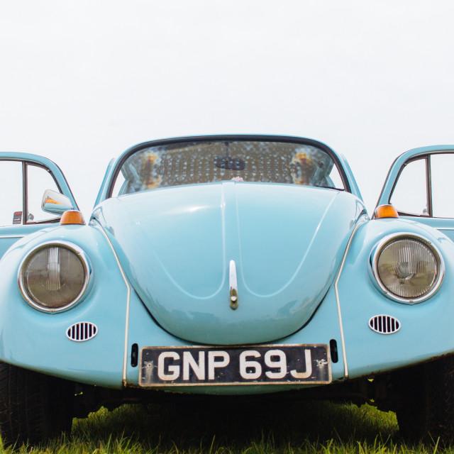 """VW Beetle front"" stock image"
