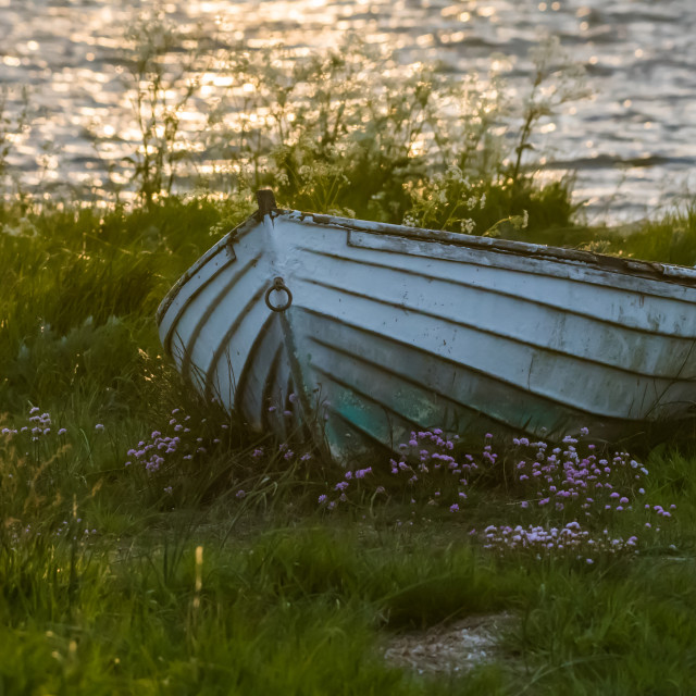 """""""Old weathered rowing boat in green grass"""" stock image"""