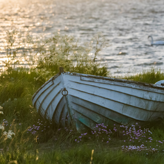 """""""Old white rowing boat on land by sunset"""" stock image"""