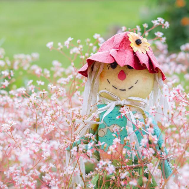 """""""A novelty scarecrow garden ornament"""" stock image"""