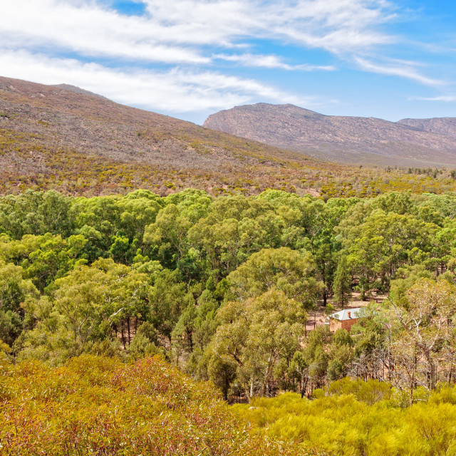 """Above Hills Homestead - Wilpena Pound"" stock image"