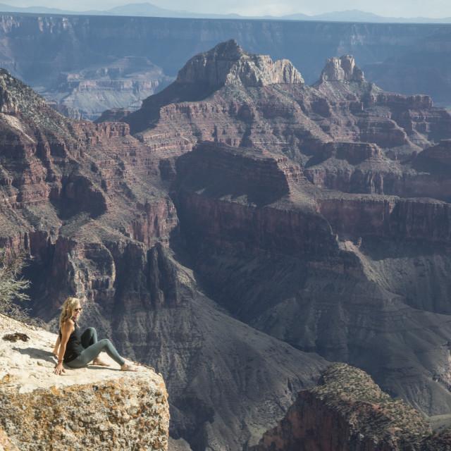 """Grand Canyon's North Rim"" stock image"