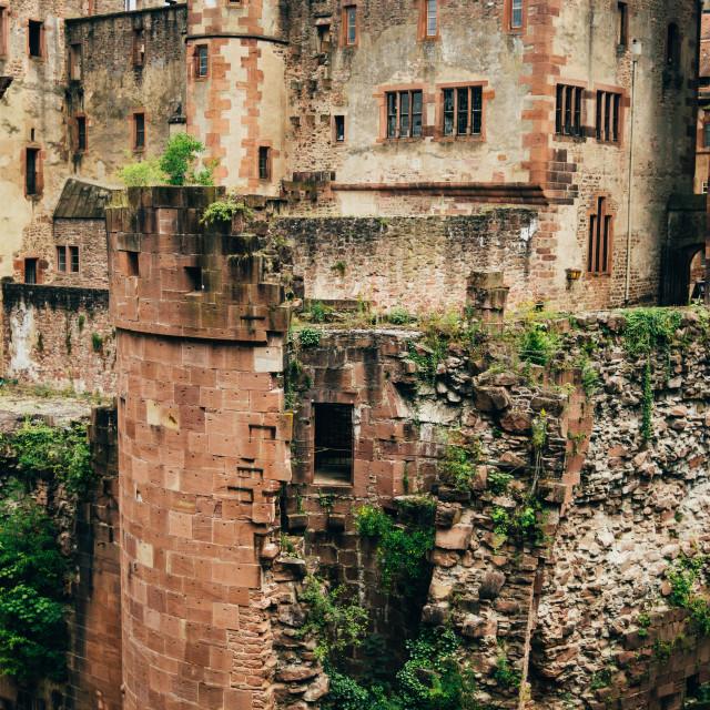 """""""Heidelberger Schloss Ruins"""" stock image"""