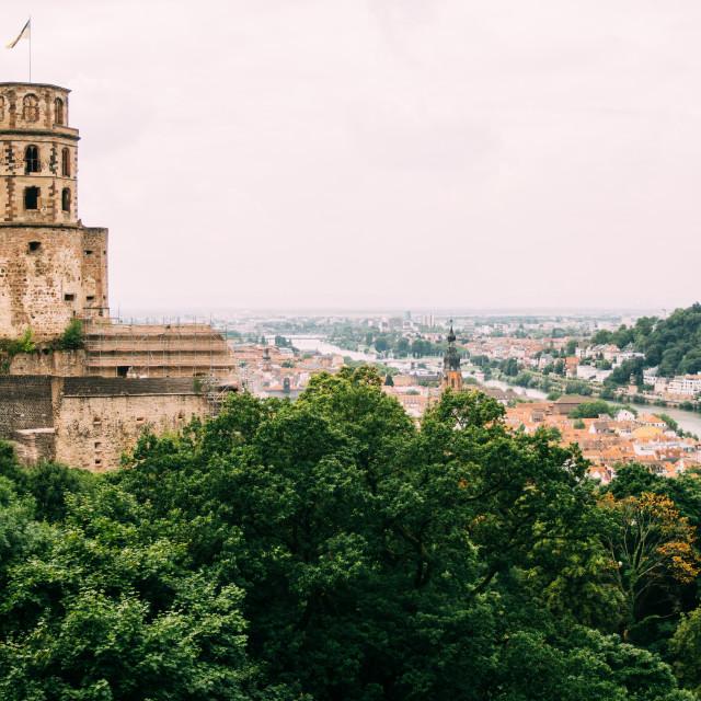 """Heidelberger Schloss"" stock image"