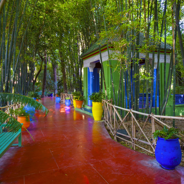 """Yves Saint Laurent's Jardin Majorelle in Marrakesh, Morocco"" stock image"