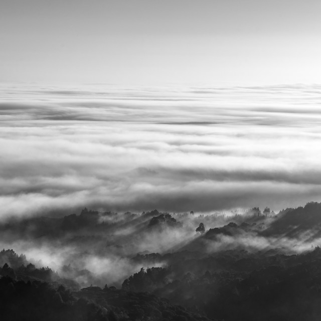 """""""Fog over the valley-2"""" stock image"""
