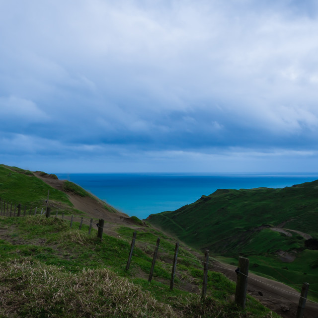 """Somewhere on the Awhitu Peninsula"" stock image"