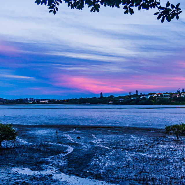 """Sunset along the Hobson Bay Walkway"" stock image"