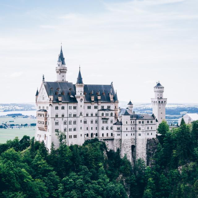 """""""Neuschwanstein Castle"""" stock image"""