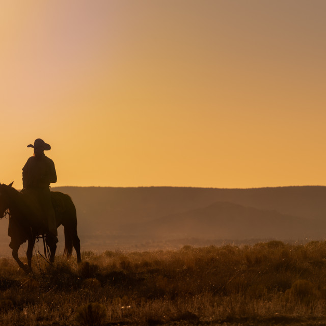 """Lone Desert Cowboy Riding At Sunrise"" stock image"
