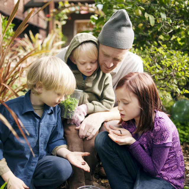 """""""Family Looking At Bugs In Garden"""" stock image"""