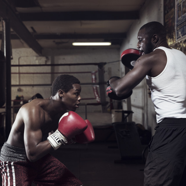 """""""Boxers practicing boxing in gym"""" stock image"""