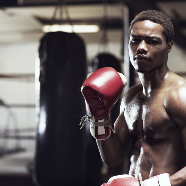 """""""Boxer wearing boxing gloves while standing in gym"""" stock image"""