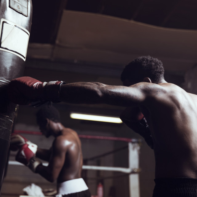 """""""Boxers practicing in gym"""" stock image"""