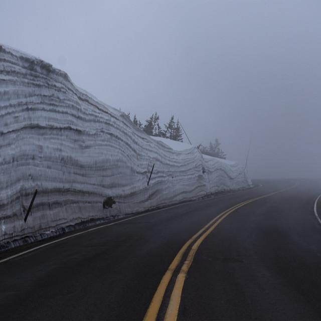 """Trail Ridge road"" stock image"