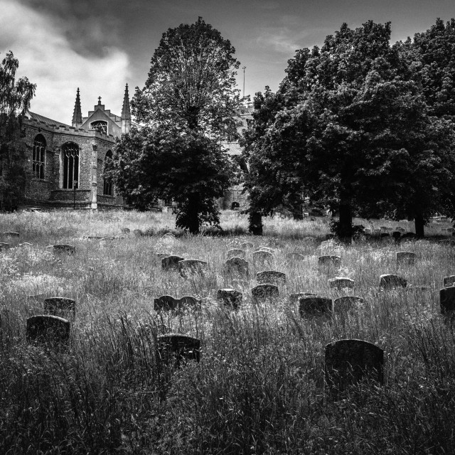 """The Great Church Yard"" stock image"