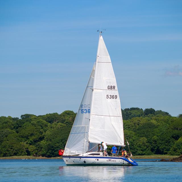 """Racing Yacht"" stock image"