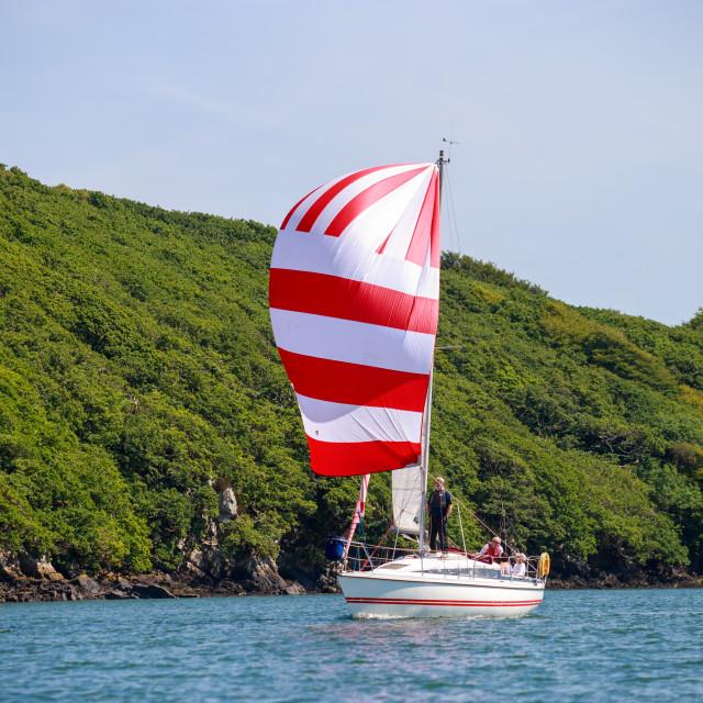 """Racing Yacht under Spinnaker"" stock image"