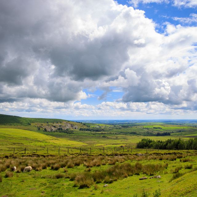 """Preseli Mountains"" stock image"
