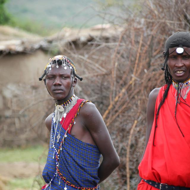 """Masai Mara Warriors"" stock image"