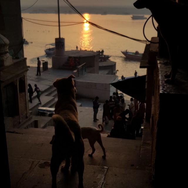 """Varanasi Sunrise"" stock image"