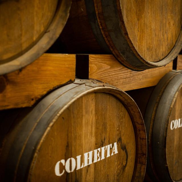 """Port wine barrels 2"" stock image"