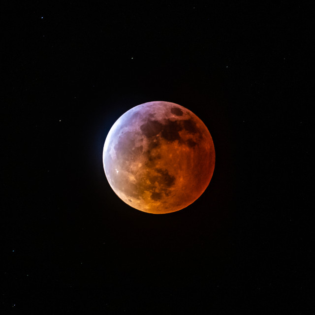 """""""Super Blood Wolf Moon"""" stock image"""