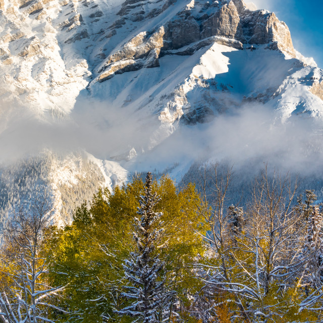 """Cascade Mountain"" stock image"