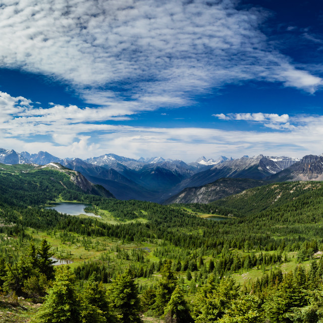 """Canadian Rockies Panorama"" stock image"