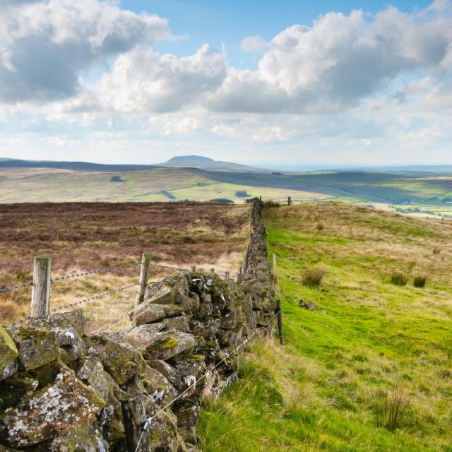 """Dry stone wall on Irish pastures"" stock image"