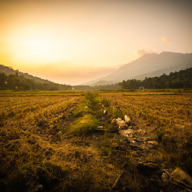 """""""Sunset at Bison Valley - 1"""" stock image"""