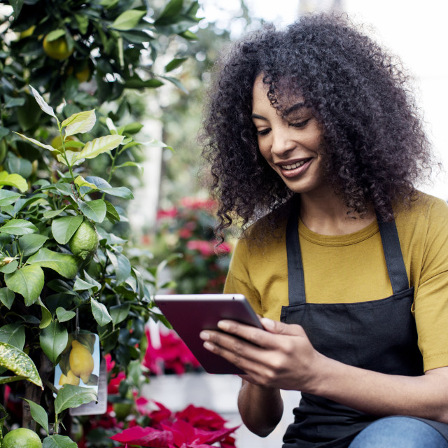 """""""Entrepreneur using tablet computer while crouching by potted plants at market..."""" stock image"""