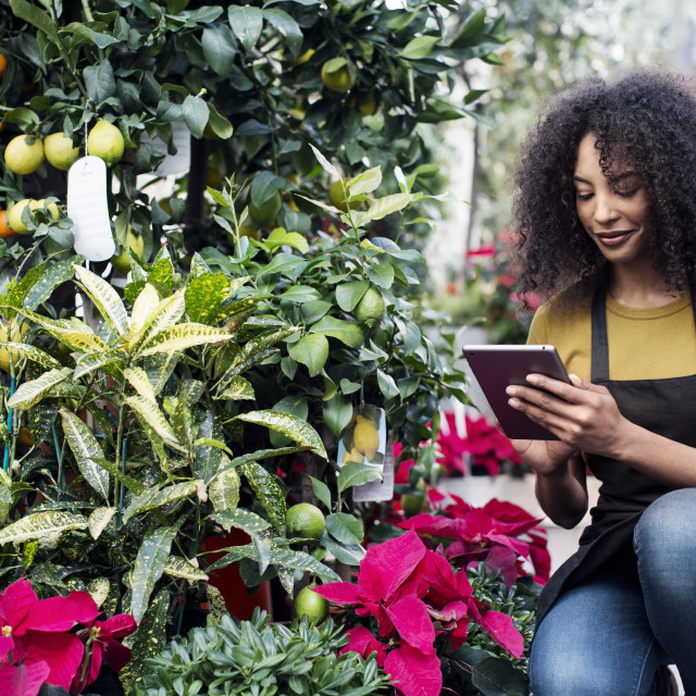 """""""Female entrepreneur using tablet computer while crouching at market stall"""" stock image"""