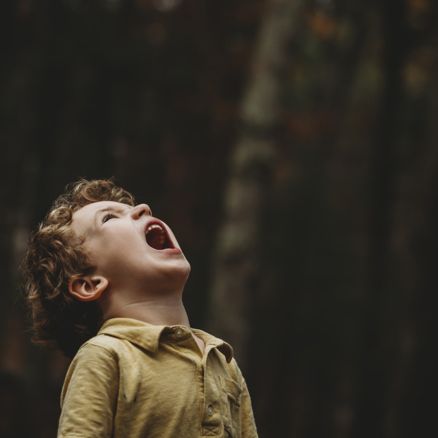 """""""Playful boy with shouting while looking up at park"""" stock image"""