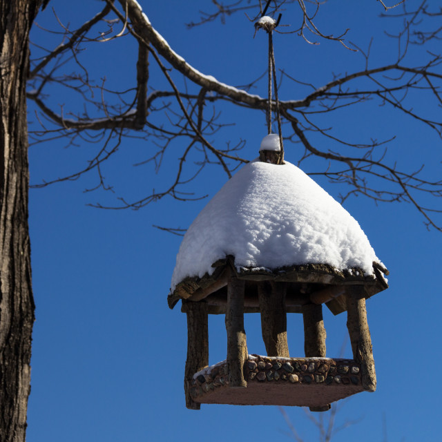 """Bird House In Winter"" stock image"