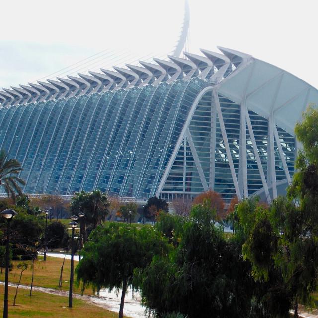 """""""El Museu de les Ciències Príncipe Felipe"""" stock image"""
