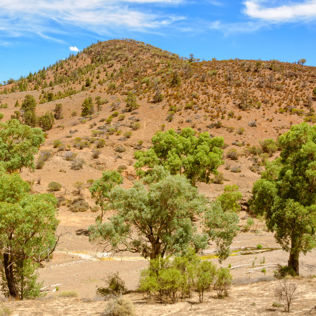 """Dry creek bed - Wilpena Pound"" stock image"