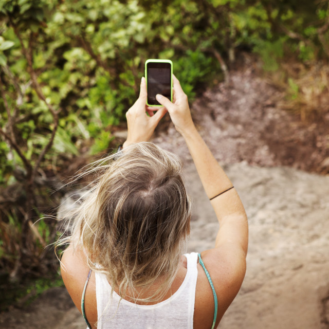 """""""Mid-adult woman photographing forest"""" stock image"""