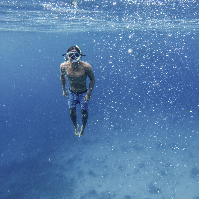 """Portrait of shirtless man snorkeling undersea"" stock image"