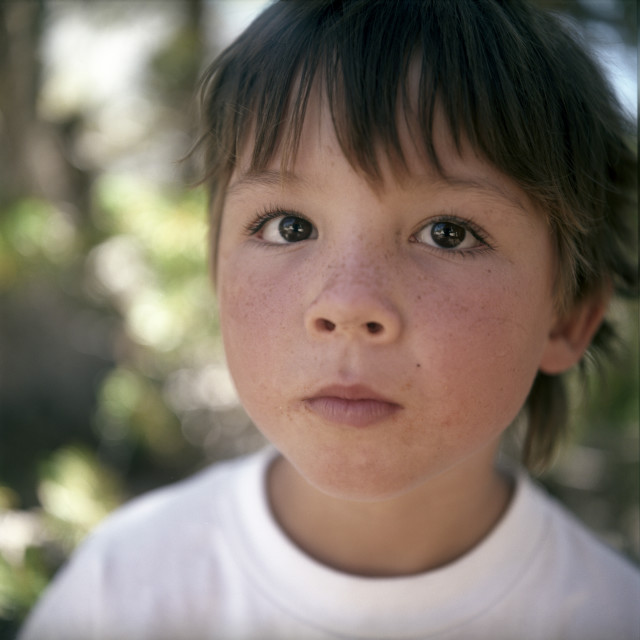 """""""Close-up of boy with freckles"""" stock image"""