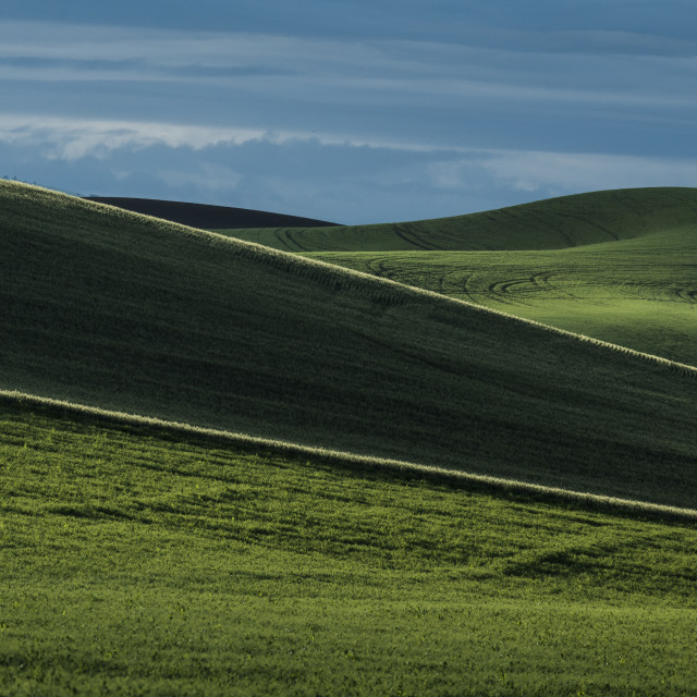 """Scenic view of Palouse Hills against sky"" stock image"